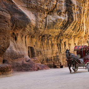 from PETRA by Ag Adibudojo - Landscapes Travel ( horse, stone, teman, travel, petra )