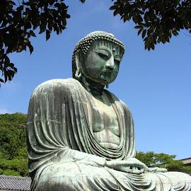 Buddha by Dennis Rathbun - Buildings & Architecture Statues & Monuments ( japa, kamakura, peace, meditation, buddha )