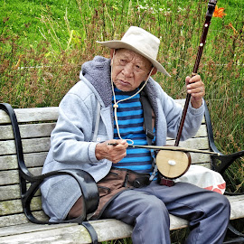 A quiet moment by Sandy Scott - People Musicians & Entertainers ( music, sweater, bench, park, people, portrait, asian, hat, stringed instrument, street photograpy, bow, san francisco, man, instruments )