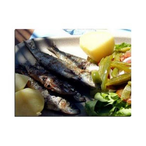 Grilled Sardines Portuguese Style