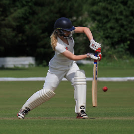 Somerset batswoman by John Davies - Sports & Fitness Cricket ( wales u17 v somerset u17 girls, women in sport, girls cricket, cricket, batsman, bowler )