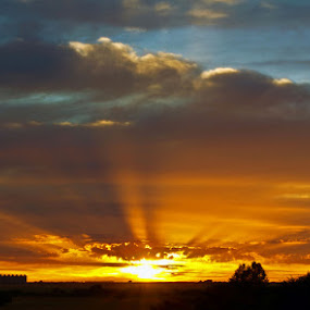 Rays of hope by Dave Ross - Landscapes Sunsets & Sunrises ( pwc sunbeams )