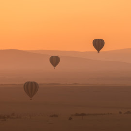 Three striped balloons fly over purple hills by Nick Dale - Transportation Other ( orange, hot air balloon, hills, african, masai mara, kenya, balloon, savannah, dawn, sunny, shadow, savanna, sunshine, sunrise, africa, light, aerial perspective )