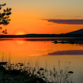 The nightless nights  by Ewa Nilsson - Uncategorized All Uncategorized ( midnightsun, lapland, sweden )