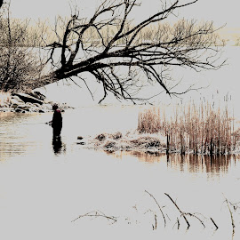 The Fisherman. by Steve Cooper - Sports & Fitness Watersports ( peace, patience, cold water, relaxation, vegetation )