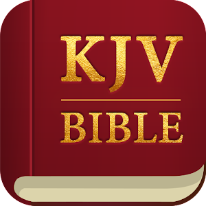 20 minutes each day to study the King James Bible. Pray to God. KJV is the best! APK Icon