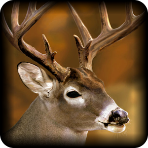 Professional Deer Hunting Calls For PC / Windows 7/8/10 / Mac – Free Download