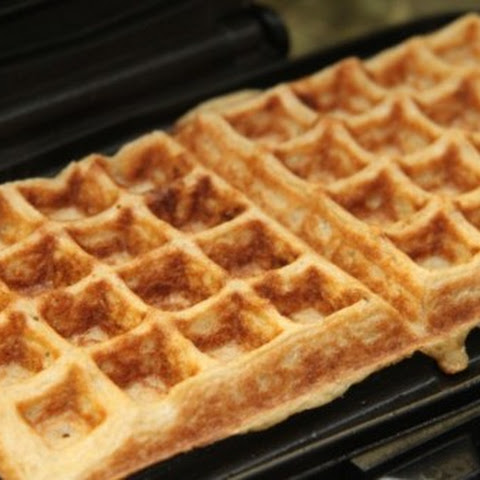 45 Calorie Fat-Free Waffle