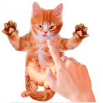 Tickle Talking Cat 1.0 Apk