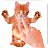 App Tickle Talking Cat apk for kindle fire