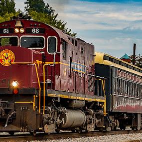 All Aboard! by Jim Harris - Transportation Trains ( train, dining car, passenger train, open car, sightseeing )