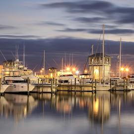 Harbor Lights by Pattie Buskirk Richardson - Uncategorized All Uncategorized ( lights, peaceful, harbor, boats, night )