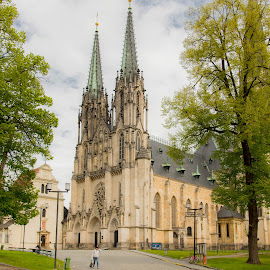 Katedrala by Dušan Gajšek - Buildings & Architecture Public & Historical ( _mesta, južna moravska, olomouc, potovanja )