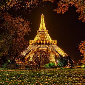 Eiffel Tower by Sebastien Gaborit - Buildings & Architecture Public & Historical