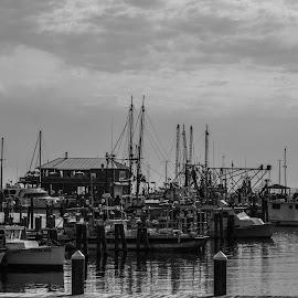 The Harbor by S Trevathan - Transportation Boats ( water, bay, ship, boats, outdoors, sea, lake, ships, beach, sailboat, boat, river )