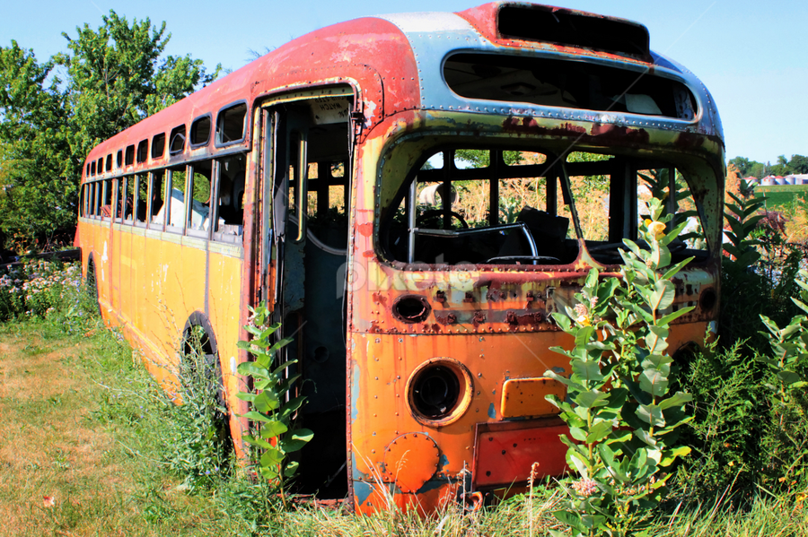 Magic Bus?? by Ted Anderson - Transportation Other ( broken, bus, hdr, rust, abandoned )