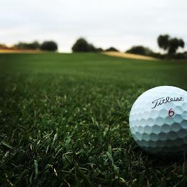 Par for the couese by Bert Jones - Sports & Fitness Golf ( bertjonesphotography )