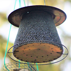 The Birdfeeder by Leah Zisserson - Artistic Objects Other Objects ( park, metal, virginia, birds, feeder )