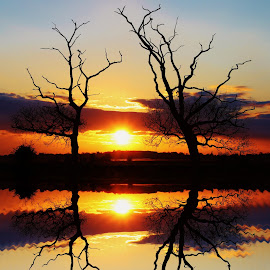 Still Reflection by Peter Salmon - Landscapes Sunsets & Sunrises ( colour, calm, reflection, sunset, still )