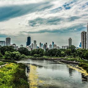 The City ! by Abhay Sharma - City,  Street & Park  Skylines ( skyline, lincolnzoo, architecture, chicago, landscapes )