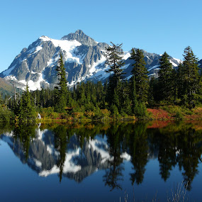 Fall at Mt. Shuksan  by Cindy Farr - Landscapes Mountains & Hills