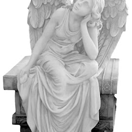 Literary Angel 1 Black And White by RMC Rochester - Black & White Objects & Still Life ( abstract, macro, black and white, art, random, object, people )