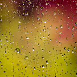 Raindrops On A Window Pane by Robert Taylor - Abstract Water Drops & Splashes ( abstract, water, nature, natures diamonds, window pane, raindrops, droplets on glass, water droplets, rain, droplets )