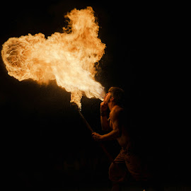 Firebreather by Vinod Kalathil - People Musicians & Entertainers ( night, chicago, entertainer, dancer, fire )