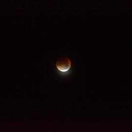 moon by Sarka Brichová - Novices Only Objects & Still Life ( moon, sky, night photography, solar, eclipse )