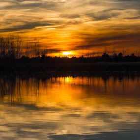 Sunset at the lake by Daly Sda - Landscapes Sunsets & Sunrises ( nature, sunset, lakes, landscapes,  )