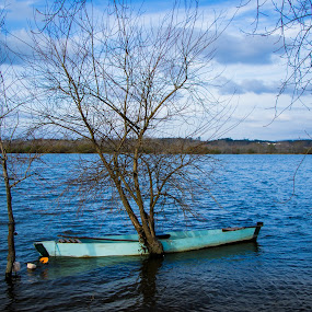 Small Boat on a Lake by João Pedro Ferreira Simões - Transportation Boats ( blue, flood, lake, fishing, portugal, boat, small )