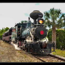 Orange Blossom Special by James Eickman - Transportation Trains ( locomotive, wood burning, train, tracks, steam )