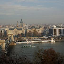Lánchíd by Sámuel Zalányi - City,  Street & Park  Skylines ( budapest, autumn, chain bridge, reflections, lánchíd, danube, sun, river )