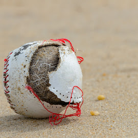 Old cracked baseball ball in sand by Jan Gorzynik - Sports & Fitness Baseball ( single, sporting, amateur, contest, exercise, equipment, object, recreation, championship, training, baseball, leather, activity, closeup, sand, ball, white, play, sport, traditional, leisure, fun, game, entertainment, pastime, outdoors, background, base, summer, active, athletic )