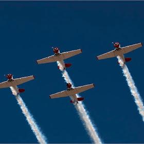 DSC_6657 Formation Flying.jpg