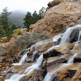Rocky Mountain Stream by Bryan Rasmussen - Landscapes Mountains & Hills