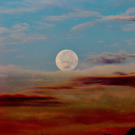 Moon Shaddows by April Nowling - Uncategorized All Uncategorized ( moon, dawn, nature, blue, texas, lunar, early morning )