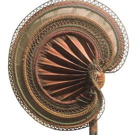 Hand Fan by Kambala Rajesh - Artistic Objects Other Objects