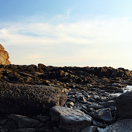 CAPE ENRAGE by Gary Colwell - Landscapes Beaches ( new brunswick, cape enrage )