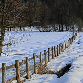 by Milan Vujasić - Landscapes Prairies, Meadows & Fields ( snowfall, mountain, wood, frost, travel, cover, sky, nature, cold, tree, snow, weather, year, sunshine, light, fairytale, xmas, white, forest, country, december, winter, vacation, environment, season, view, day, natural, colorful, beauty, landscape, frozen, sun, ice, park, flora, beautiful, christmas, scenic, morning, field, new, color, blue, sunset, background, outdoor, cloud, sunrise, scenery )