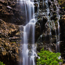 Waterfall Canyon by Ryan Moyer - Landscapes Waterscapes ( water, waterscape, utah, waterfall, landscape )