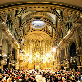Montserrat Cafedral by Svetlana Saenkova - Buildings & Architecture Places of Worship ( spain, audience, church, yellow, montserrat, interior,  )