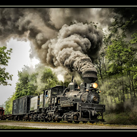 Shay #4 - Steam Locomotive by James Eickman - Transportation Trains (  )