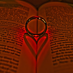love ring by Danny Charge - Wedding Other ( love, ring, hdr, wedding, book )
