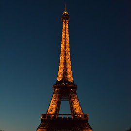 Eiffel Tower Lit up by Chris Wilson - Buildings & Architecture Statues & Monuments