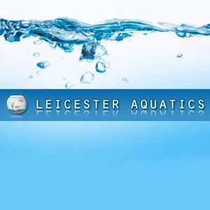 Download Leicester Aquatics for Windows Phone