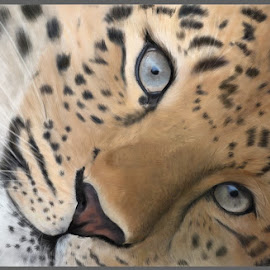 resting Leopard by Nicole Rix - Painting All Painting ( painter_2016, cat, art, painting, leopard, eyes )