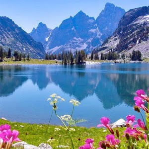 Nature hd pictures apk for blackberry download android - Nature wallpaper apk ...