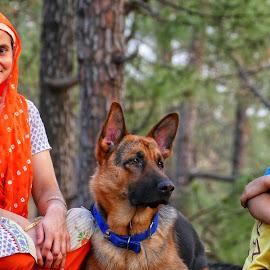Rocket league by Kanwar Rajneesh Singh - Animals - Dogs Portraits