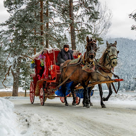 by Veli Toluay - Transportation Other